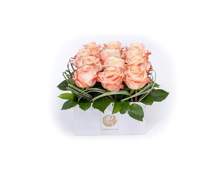 NIAMEY- Graceful Roses in Box