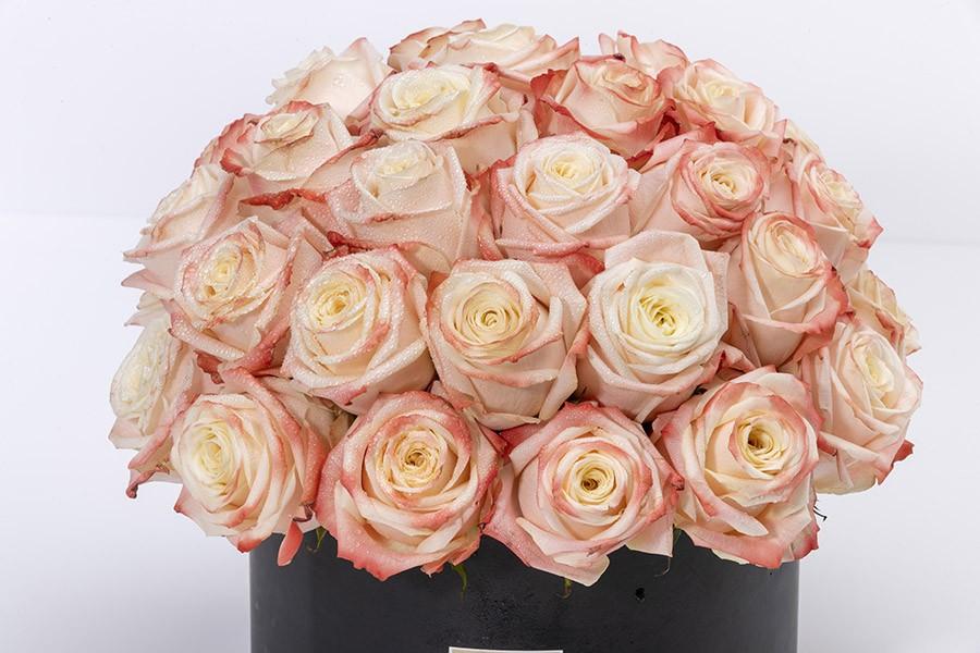 VEDUZ- Luxury Peach Roses Box